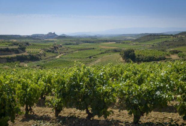 Rioja-Labastida