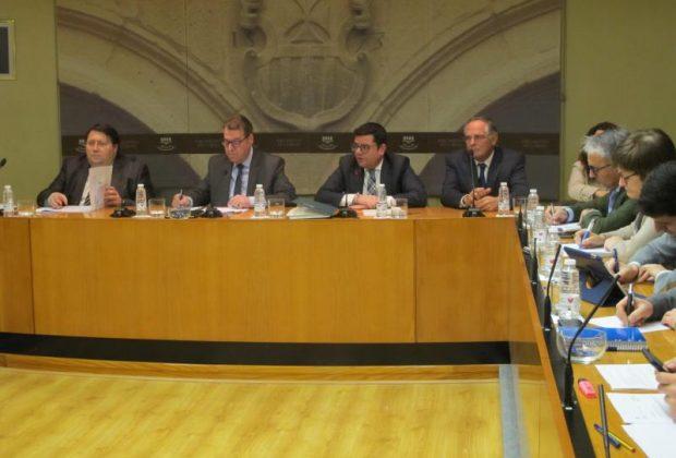 Domínguez comparecencia Ley de Medidas Urgentes (8)